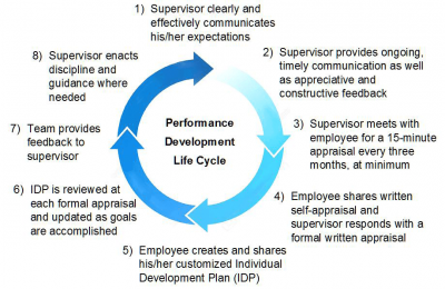 Performance Development Life Cycle
