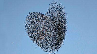 The Secret to Leading Organizational Change Is Empathy