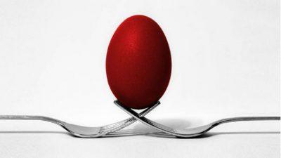 Striking Balance with Whole-Brain Leadership